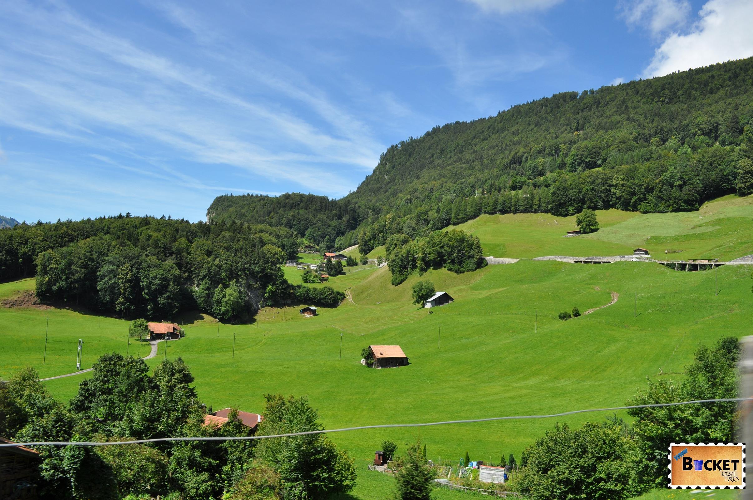 Undeva intre Luzern si Grimsel - pasuni alpine, de vis