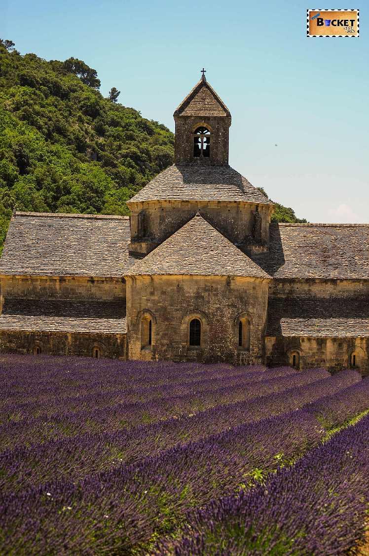 France Provence Abbaye Senanque