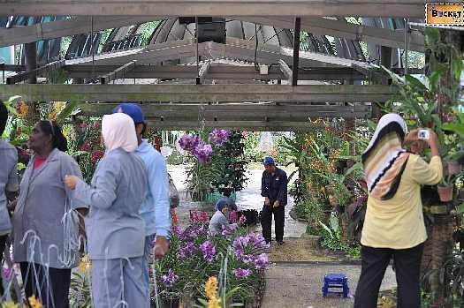 Kuala Lumpur Orchid Garden