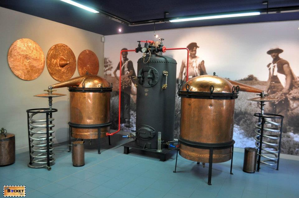 Muzeul lavanei - Franta