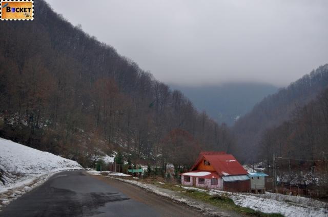 Padiş iarna