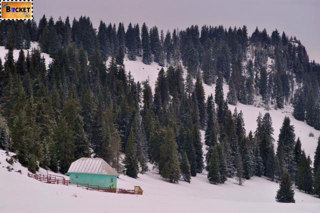Peisaj de iarnă prin munţii Apuseni