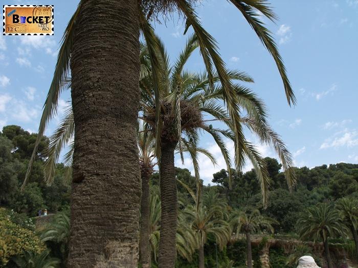 Parc Guell Barcelona  - papagali