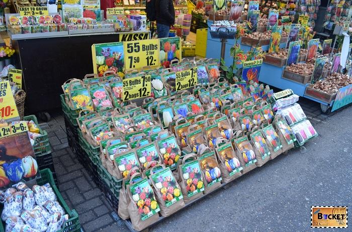 Bloemenmarkt, bulbi de lalele in piaţa de flori din Amsterdam