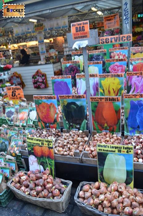 Bulbi de lalele in Bloemenmarkt