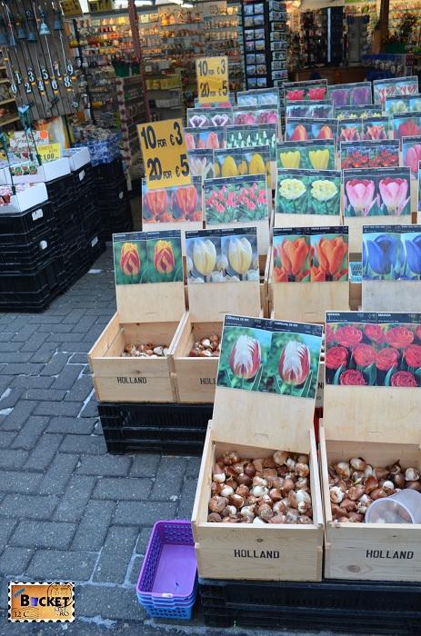 Bulbi de flori in Bloemenmarkt