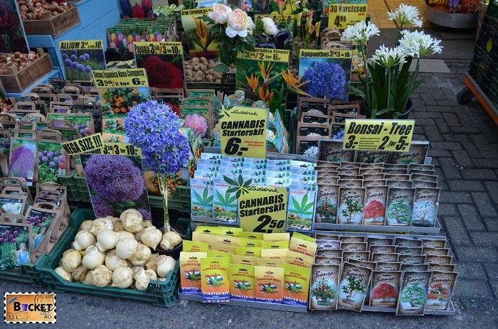 Seminte de Canabis @ Bloemenmarkt, piaţa de flori din Amsterdam