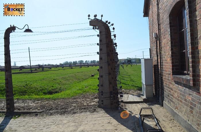 Gard electrificat  lagărul de concentrare Birkenau