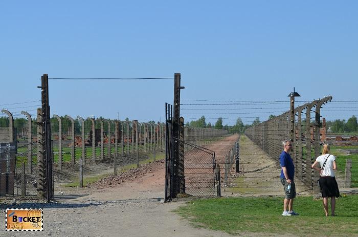 Lagărul de concentrare Auschwitz II - Birkenau -drum spre crematoriu