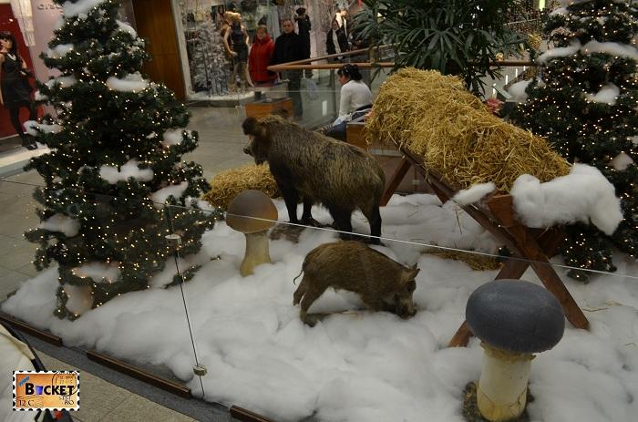 Animale sălbatice naturalizate la Mini târgul de Crăciun din Forum Debrecen