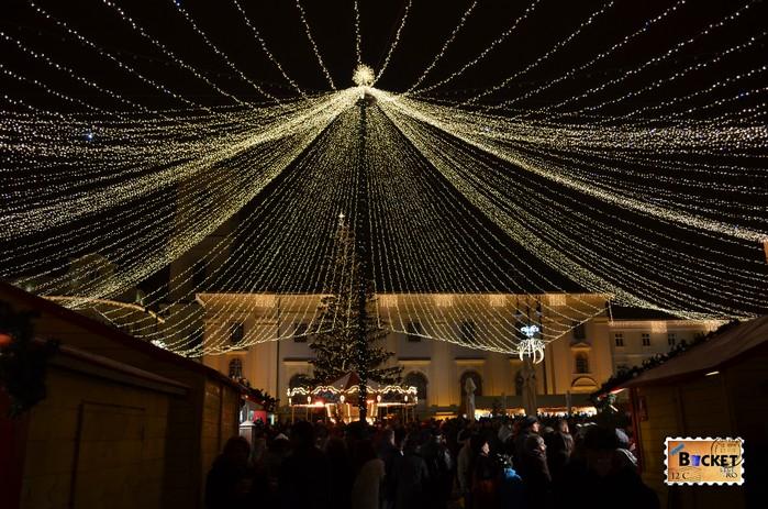 Targul de Craciun din Sibiu - Plasa de stele si bradul din piata