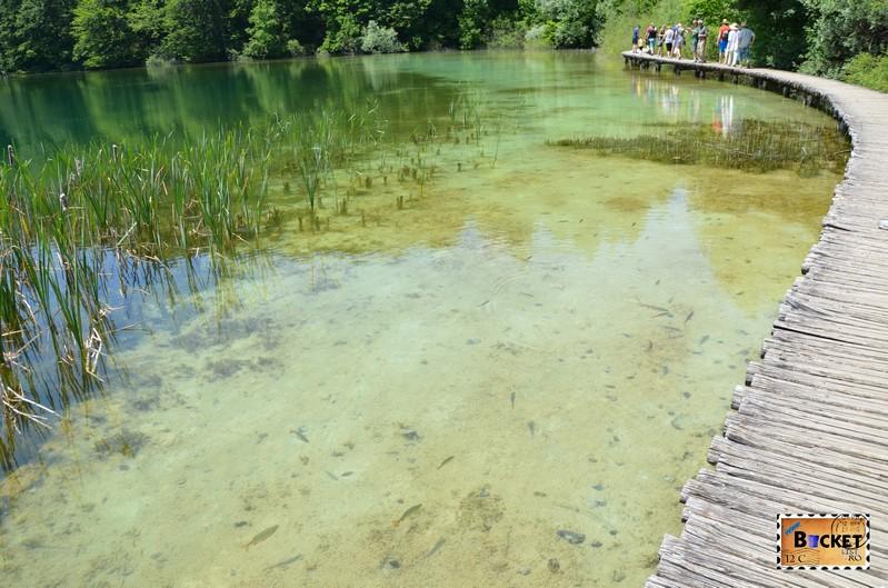 Lacurile superioare de la Plitvice - Prošćansko jezero
