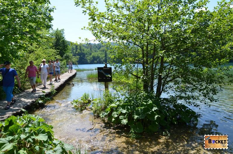 lacul Galovac