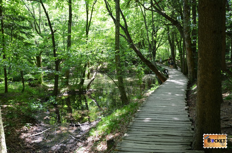 traseu prin lacurile superioare din Parcul National Lacurile Plitvice